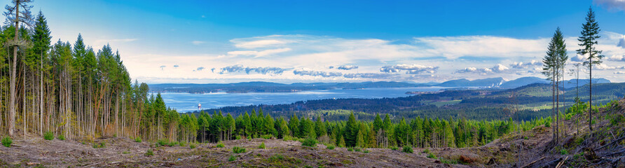 Panoramic view of Ladysmith shoreline from top of a mountain, Vancouver Island, BC, Canada Wall mural
