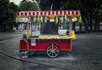 ISTANBUL, TURKEY - APRIL 30, 2018: Street seller of fast food with boiled and grilled corn and chestnut on traditional turkish cart at Sultanahmet square