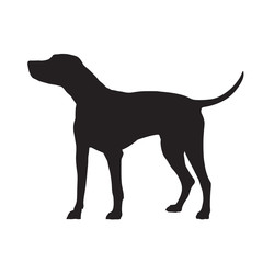Dalmatian dog standing, isolated vector silhouette. Pets