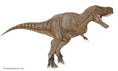ティラノサウルス・レックス。白亜紀の代表的肉食恐竜のイラスト画像。大型のために過度のカモフラージュ色を避け、茶系の体色を採用した。