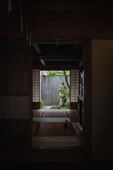 古都金沢 町屋の坪庭