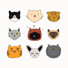 Set of cute funny color doodles of different cats faces. Isolated objects on white background. Hand drawn vector illustration. Line drawing. Design concept for poster, t-shirt, fashion print.