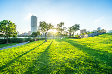 city skyline with green lawn Wall mural