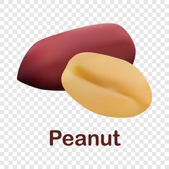 Peanut icon. Realistic illustration of peanut vector icon for on transparent background