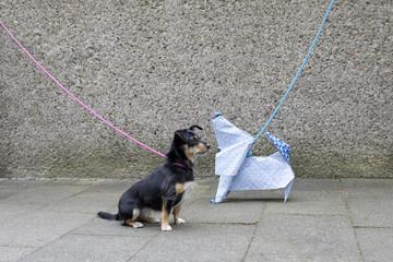 Blue origami dog and dog waiting