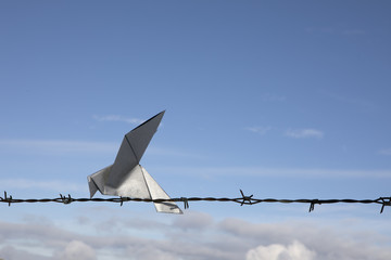 Origami bird sitting on barbed wire, copy space
