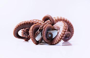 Oktopus Krake Tentakel Seafood