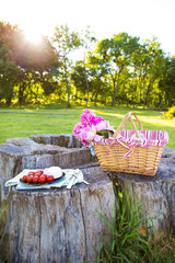 Beautiful basket with flowers and a plate with food stands on a wooden stump