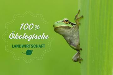 Frosch 100 Prozent Ökologische Landwirtschaft