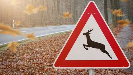 Straßenschild Wildwechsel im Herbst