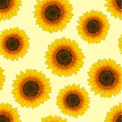 Orange Yellow Sunflower Seamless on Beige Ivory Background