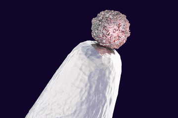 Stem cell research, 3D illustration showing stem cell on a tip of laboratory needle