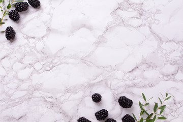Marble background with fresh blueberries with green plants
