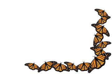 Monarch Butterflies Watercolor Style Border