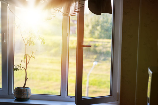 Sunlight through the open window lights the bedroom.