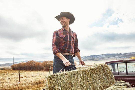 Cowboy moving hay happily