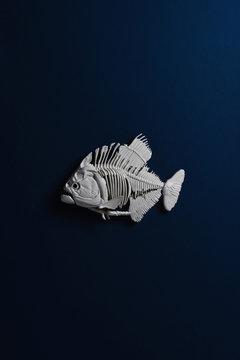 Phirana fossil