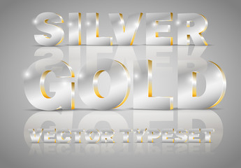 Silver and Gold Accent Metallic 3D Typeset