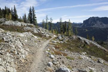 Hiking trail extending through alpine hillside, Pasyaten Wilderness, Washington