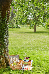 Poster Picnic Summertime picnic for two in a lush green park