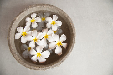 White Flowers Floating in Water in Stone Bowl