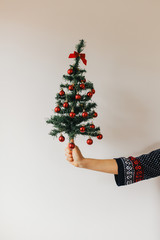 Woman holding a christmas tree