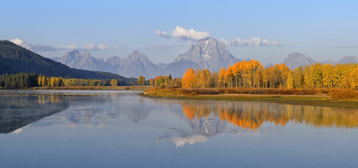 Oxbow Bend, Snake River with Mt Moran and American Aspens (Populus tremuloides), Autum, Grand Teton National Park, Wyoming, USA