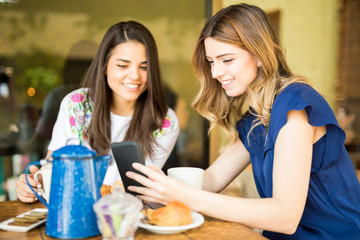 Female friends using phone at coffee shop