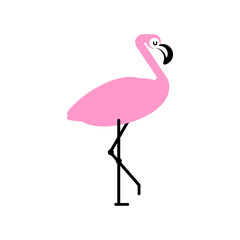 Pink flamingo isolated. Bird with long legs. Vector illustration