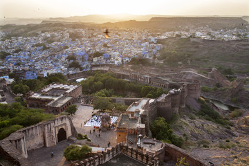 Jodhpur City top view with flying Bird from Meherangarh Fort of Rajasthan,India