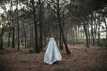 Child in ghost costume