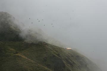 Mardi Himal Trek: Foggy mountain landscape.
