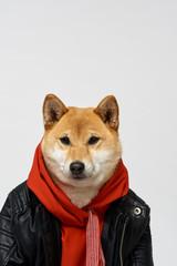 Portrait of stylish buddy