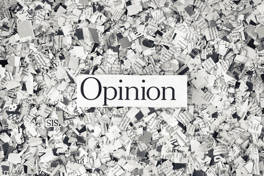 Opinion on a bed of cut up Newspaper
