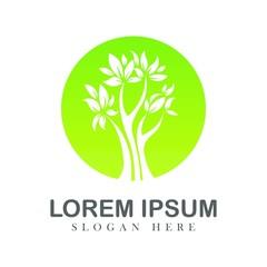 Tree oak green nature design logotype vector concept embem isplated illustration background white