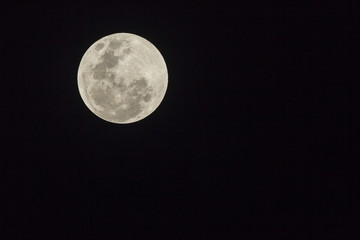 Full Moon Planet Detail Evening Night Sky