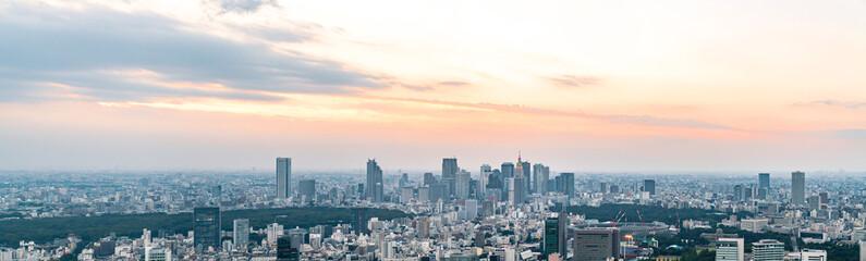 Foto op Canvas Stad gebouw 東京の景観
