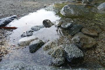 清流の小石たち