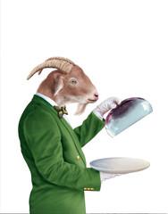 tête de chèvre, chef, maître d'hôtel, restaurateur, illustration, photo, plat