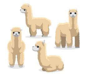 Alpaca Poses Cartoon Vector Illustration
