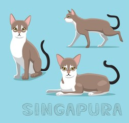 Cat Singapura Cartoon Vector Illustration