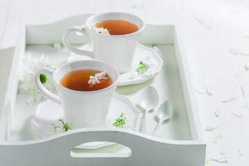 Fresh to cup of tea with honey with spring flowers