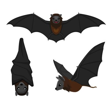 Cute Bat Poses Cartoon Vector Illustration
