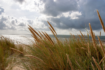 Beach of Sylt