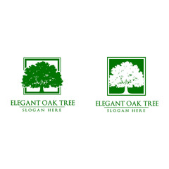 Green Oak Tree Vector Logo Design