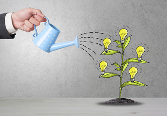 Top view Investment is like planting trees. Take care it will provide a good growth on gray background.Watering can and money tree drawn concept for business investment.