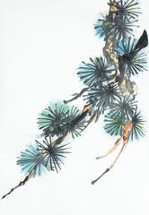 pine branch on a light background
