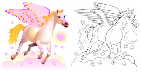 Colorful and black and white pattern for coloring. Fantasy illustration of cute Pegasus, winged horse in Greek mythology. Worksheet for children and adults. Vector image.