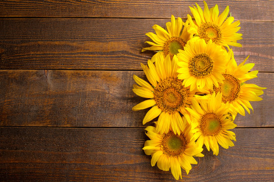 Many beautiful bright yellow sunflowers on a brown wooden background. top view with a place for inscription