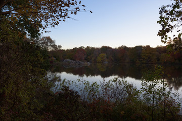 Reflection of trees and foliage in beautiful autumn colors in a pond in central park at sunrise, New York, United States of America